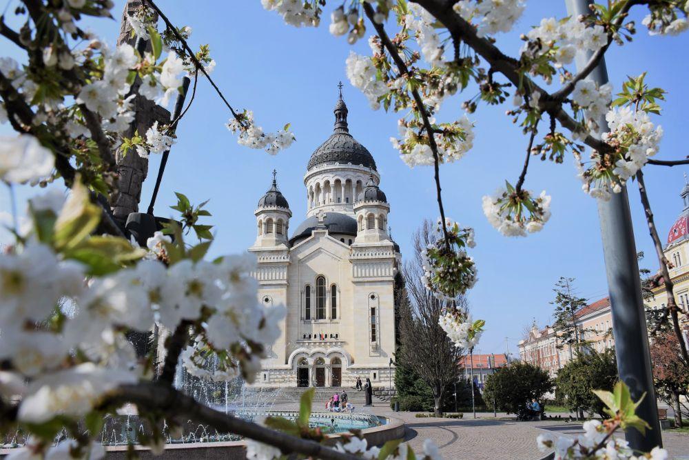 Duminica Sfântului Ioan Scărarul, la Catedrala Mitropolitană din Cluj-Napoca